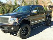 Ford 2013 Ford F-150 Platinum